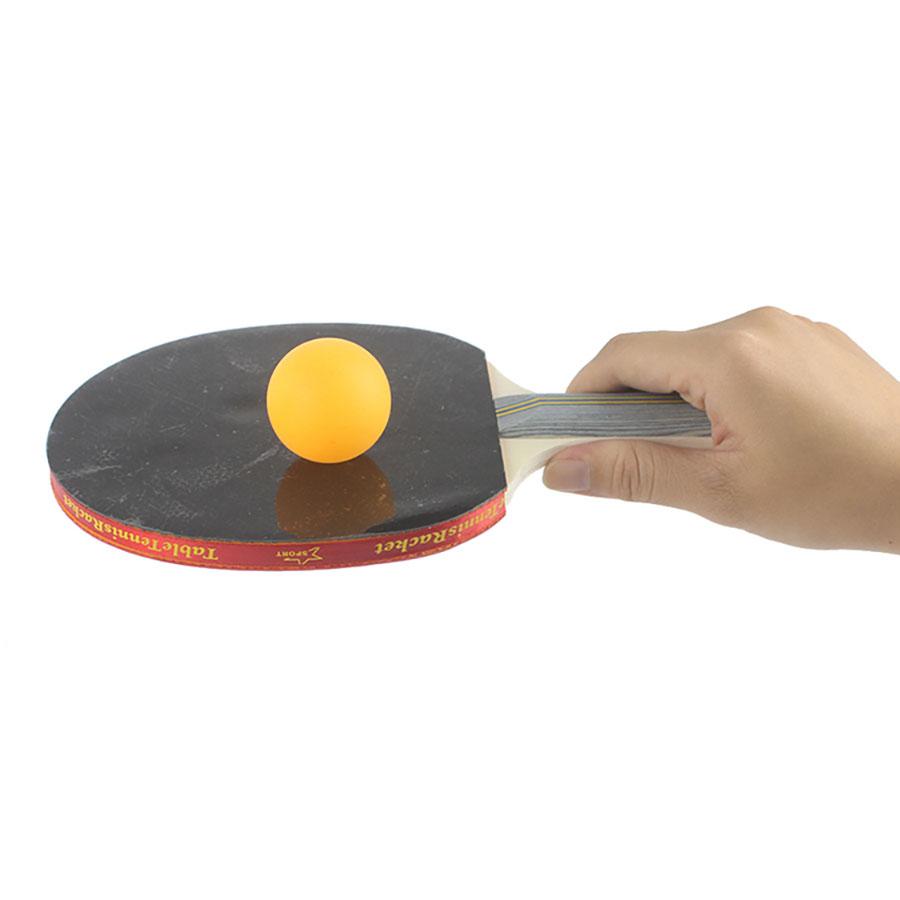 Bộ 2 vợt bóng bàn Aolikes AL9841B